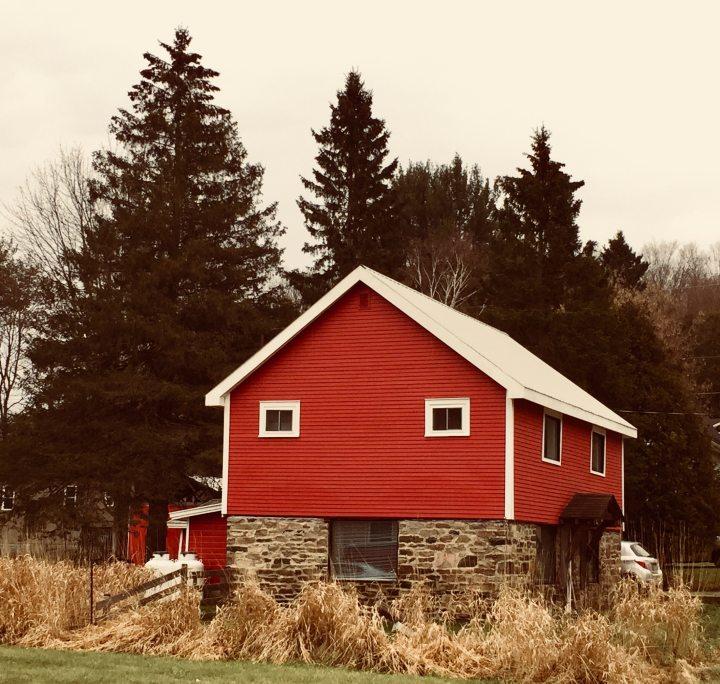backyard-cabin-daylight-750697.jpg
